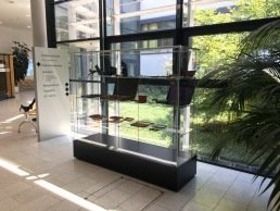 Flexible, gesteckte Frank Schrank-, Regal-, Tablar-Vitrine mit stufenlos einstellbarem Tablarsystem in Ulmer Klinik.