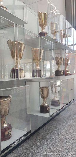acrylic display showcases